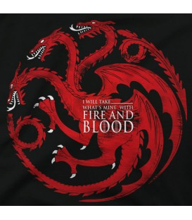 home modelo Fire and Blood Targarian