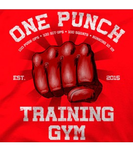home modelo ONE PUNCH GYM