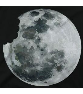 home modelo Moon Bite