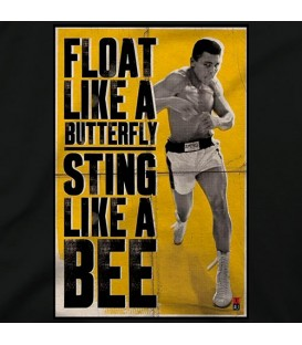 home modelo Float like a butterfly