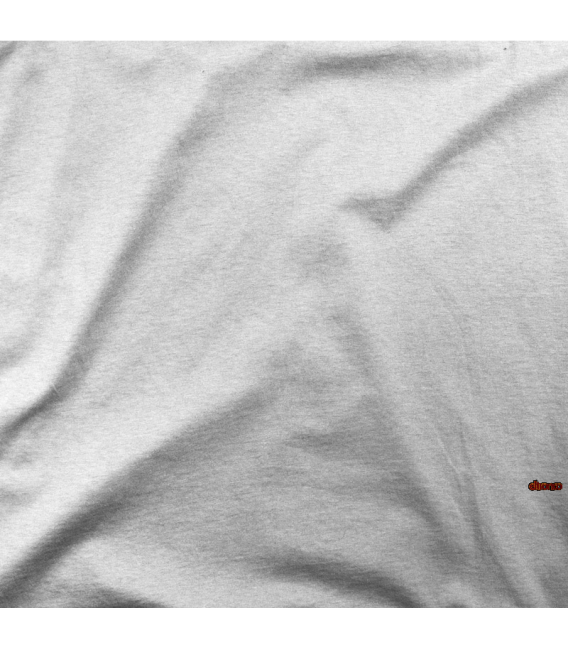 COMPUTER IN VACATION