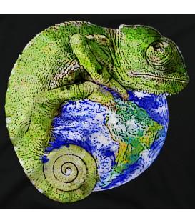home modelo Lagarto Mundo Acuarela