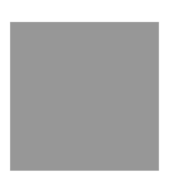 Version Escudo a Boli