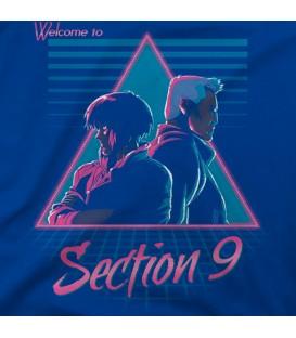 home modelo Section 9