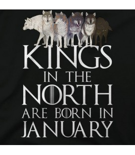 home modelo Kings in the North January