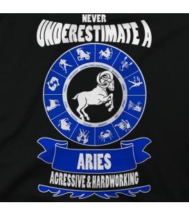 home modelo Aries