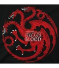 Fire and Blood Targarian