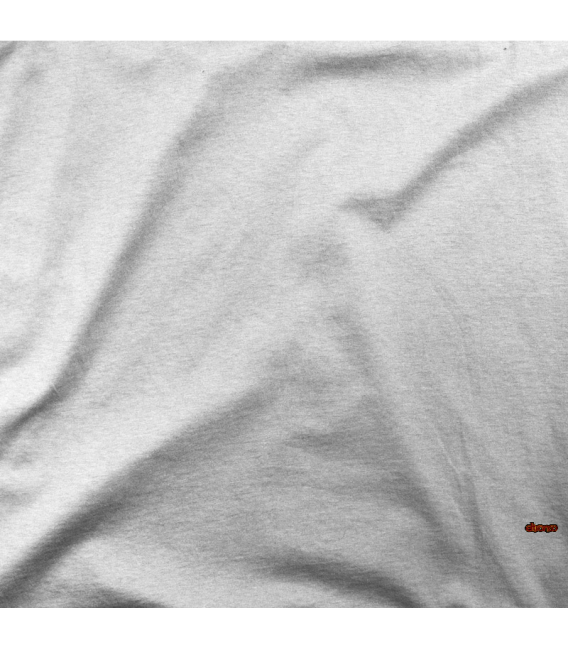 INFORMATICO EN VACACIONES