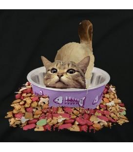 Gato comedero B