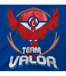home modelo TEAM Valor