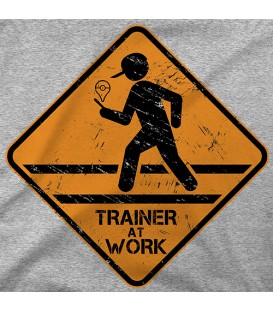 Trainer at Work