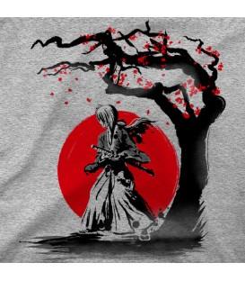 home modelo Wandering Samurai