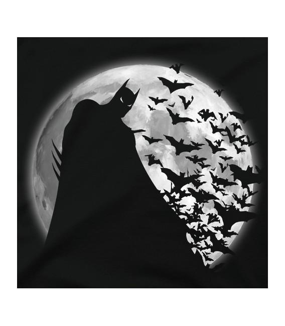 Shadow under the moon