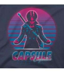 home modelo Capsule Corp