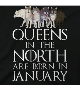 home modelo Queens in the North January